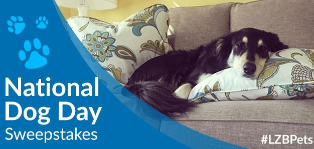 La-Z-Boy National Dog Day Sweepstakes 2018 – Chance To Win Comfy New Spot
