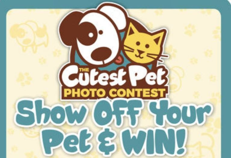 Dayton Daily News Cutest Pet Contest-win Kings Island 2-One Day Tickets