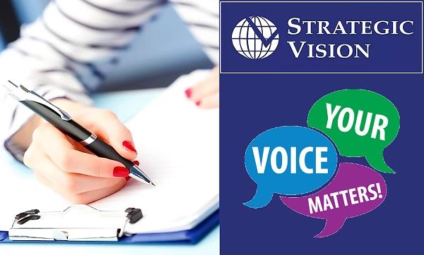 Strategic Vision Survey