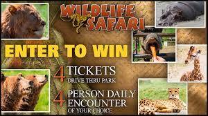 KEZI Wildlife Safari Giveaway