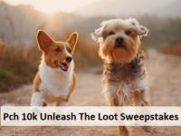 Pch 10k Unleash The Loot Sweepstakes