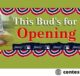 Budweiser Best Buds Opening Day Sweepstakes