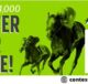Travers Stakes Enter To Win Bet Sweepstakes