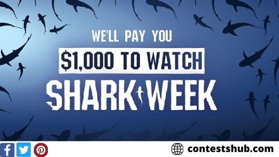 Shark Week Cash Sweepstakes