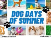 CMG Miami Dog Days Of Summer Gift Card Giveaway