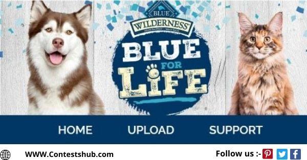 Blue Buffalo Blue For Life Sweepstakes
