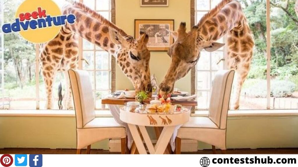 Omaze Giraffe Manor Sweepstakes