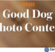 Garden And Gun Good Dog Photo Contest