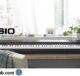 Best Buy Canada Casio Keyboard Contest