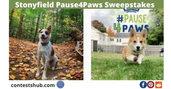 Stonyfield Pause4Paws Sweepstakes