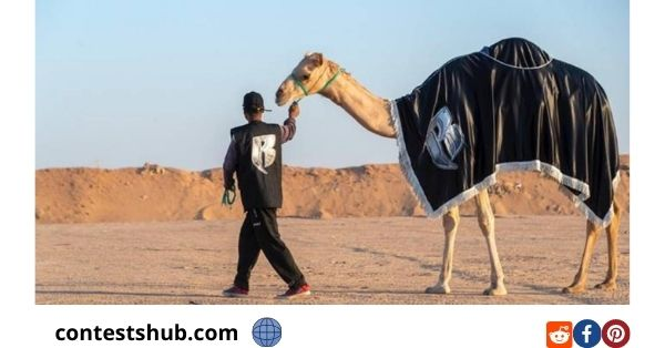 Camel art Affect In Residence Instant Win Game