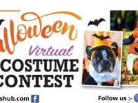 Star 94.1 Virtual Halloween Costume Contest