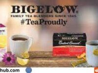 Bigelow & Keurig Brew Over Ice Giveaway